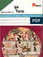 Asya Tipi Üretim Tarzi (ATÜT) - Chesneaux, Varga