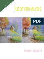 Clin2UAPrinciplesOfUrinalysis(1).pdf