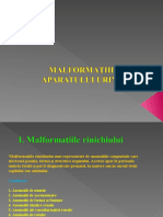 Malformatii Curs 2015