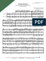 Schumann 3vc