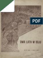 Legiunea Poloneza_Baia Borsa