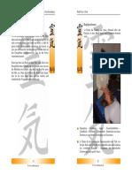 Reikimaster - Reiki-Praxis - Ganzbehandlung Front