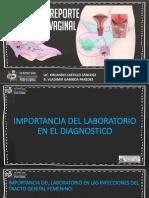 PARTE 1 SEVA.pdf