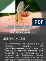 LESHMANIASIS