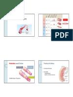 Blood Flow & Pressure.pdf
