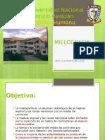 mielografia.pptx