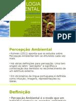 Apresentação Percepção Ambiental