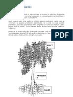 Copacul problemei