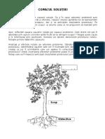 Copacul solutiei