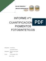 Informe 2 SAP