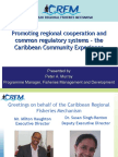 4-Promoting Regional Cooperation - The Caribbean Experience