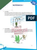 Resumen y Dirigidas Botánica  I