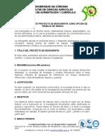 """4. Guã-A Presentaciã""""n Proyecto Trabajo de Grado (Monografia)"""
