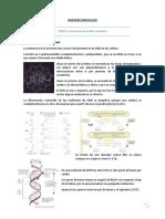 tema 1 Biologia molecular