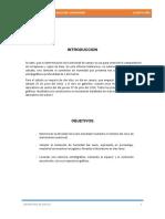 Informe 4 Suelos - Densidad in Situ Calicata