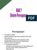 Bab Pernapasan dyah esis.ppt
