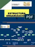 361961Estructura Organizacional. UNICARIBE