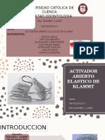 ACTIVADOR ELASTICO DE KLAMMT