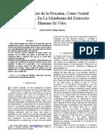 La Membrna Del Eritrocito in Vitro Posible Efecto NT