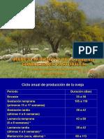 Manejo Nutritivo Del Ovino en Condiciones Pastoriles