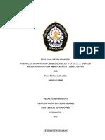 Proposal KP New (Faisal)