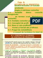 teoria costurilor