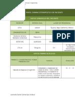 Perfil Farmacoterapéutico de Paciente