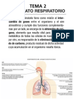 Anatomía Aplicada de 1º BAchillerato. Tema 3