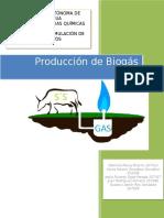 Produccion de Biogas