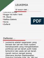 Power Point Leukemia