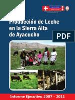experienciastecnicas.pdf