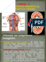 Diagnosticul Imagistic Al Aparatului Urinar