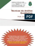Lab1-Téc Da Análise Qualitativa Semimicro - 2015