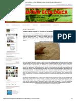 Alternativa Ecológica_ ¿Cómo Se Debe Utilizar El Aserrín en El Biohuerto