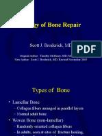G07 Biology of Bone Repair