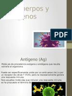 005 Anticuerpos y Antígenos EXPO
