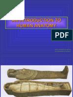 An Introduction to Human Anatomy