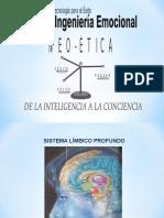 Cerebro y Conducta