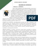 Resumen Contratos - Alfredo.doc
