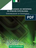 LIBRO+PLANES+ESPECIALIZADA.pdf