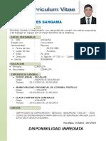 Curriculum Vitae Luis Gonzales Sangama