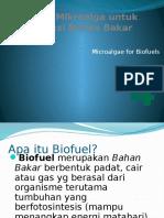 4. ALGAL BIOFUELS.pptx