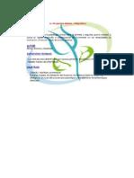Modelos en evaluacion.docx