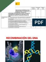 Tema v Recombinacion de Dna1