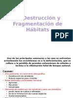 La Destrucción y Fragmentación de Hábitats ( Tala