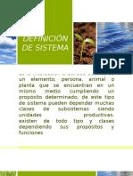 DEFINICIÓN DE SISTEMA.pptx