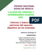 Informe Sobre los patrones del aparato digestivo en los animales