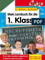 Mein-Lernbuch-fur-die-1-Klasse-Deutsch-Rechnen-Sachkunde.pdf
