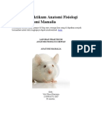 Laporan Praktikum Anatomi Fisiologi Hewan Anatomi Mamalia