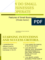 Features of Small Businesses